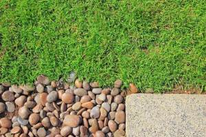 Using Decorative Pebbles as Mulch